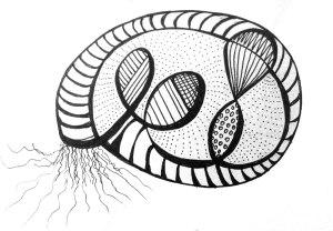 Original-Doodle-Shell-sketch