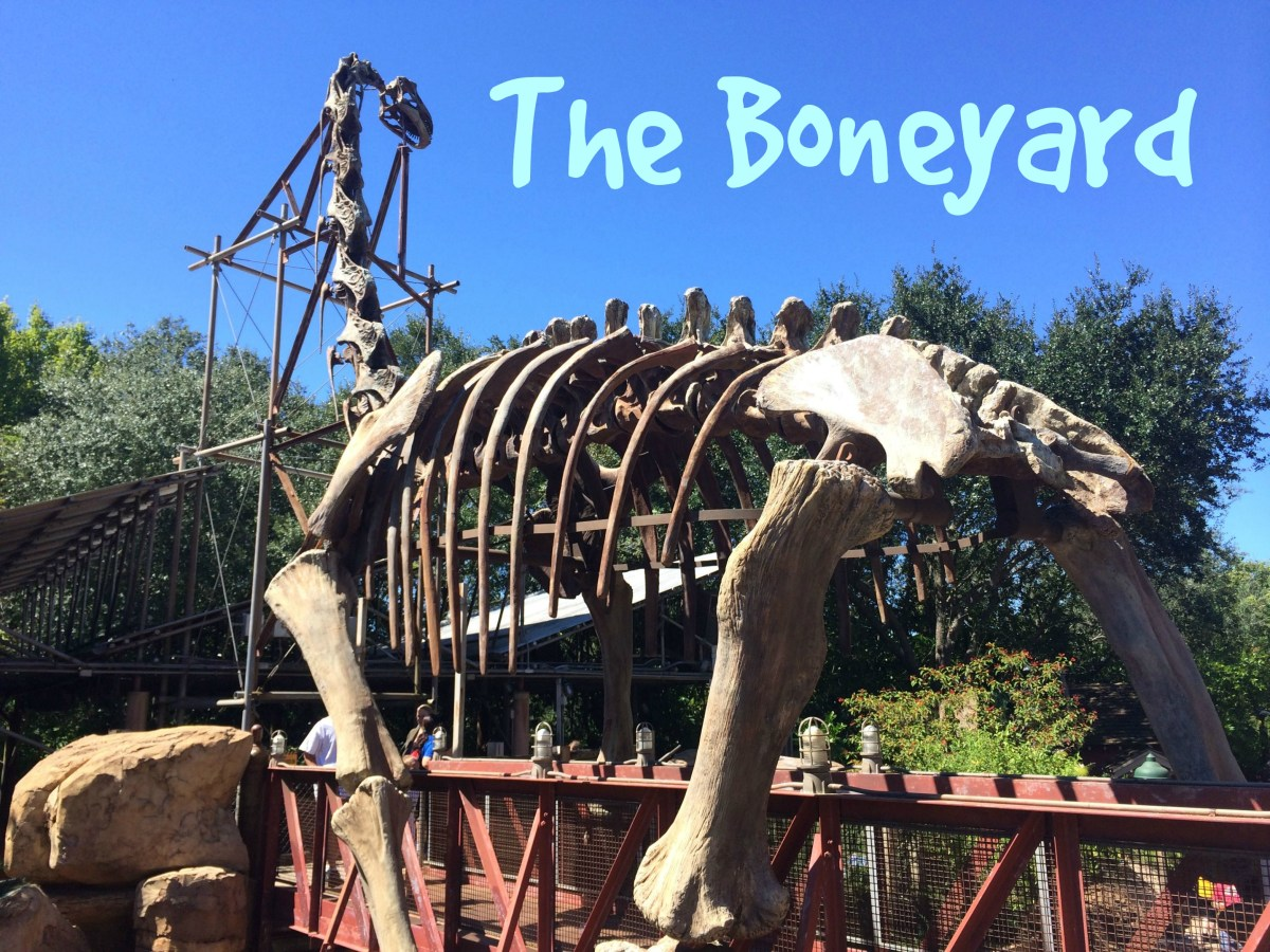 Disney's Animal Kingdom: The Boneyard