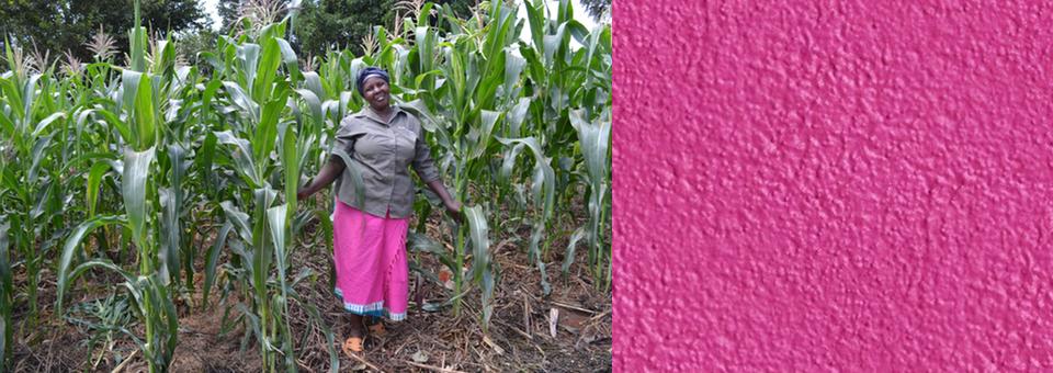 Farming God's Way in Kenya