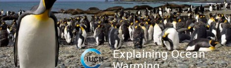 Ocean Warming For And By The Politically Correct
