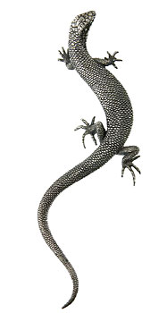Skink Lizard Brooch