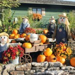 Silver Dollar City National Harvest and Cowboy Festival