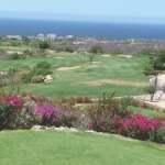 Ten Best Golf Courses in Los Cabos