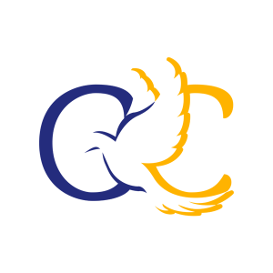 Catholic Campaigns - Parish Websites