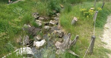 Tip na výlet: Živá voda, obec Modrá