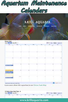 aquarium | Aquarium Maintenance | Pinterest | Aquarium, The Kid and