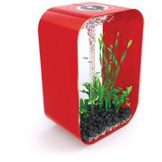 fish tanks! on Pinterest   Fish Tanks, Aquarium and Unique Fish Tanks