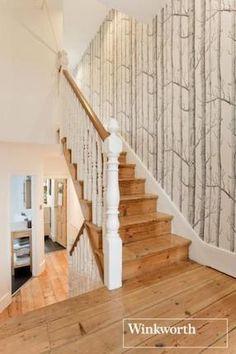 1000+ ideas about Tree Wallpaper on Pinterest | Birch Tree Wallpaper, Wood Wallpaper and ...