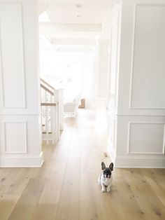 Oak Flooring. White
