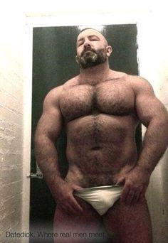 chubby bear cock