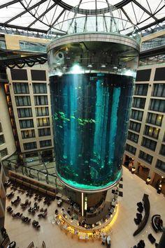 Craziest fish tanks ever on Pinterest | Fish Tanks, Cool Fish Tanks