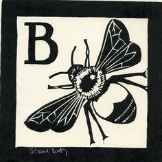 B is for Bee by Step