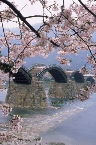 Sakuragawa river, Japan: