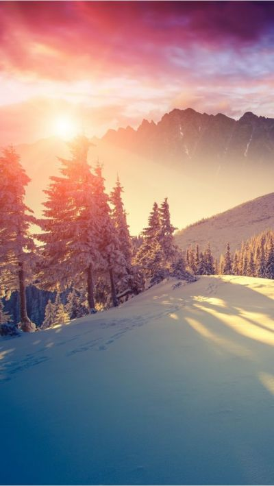 Winter sun - iPhone wallpapers @mobile9 | iPhone 6 & iPhone 6 Plus Wallpapers, Cases & More ...