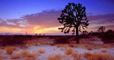 Mojave Desert in California   ... Scenes wallpaper ...