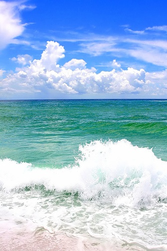 25+ best ideas about White sand beach on Pinterest | Where is palm beach, Beaches in florida and ...