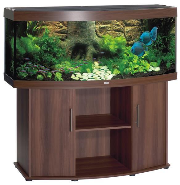 fish tank ideas   10 Gallon Fish Tank Decoration Ideas   Ideas for Mum
