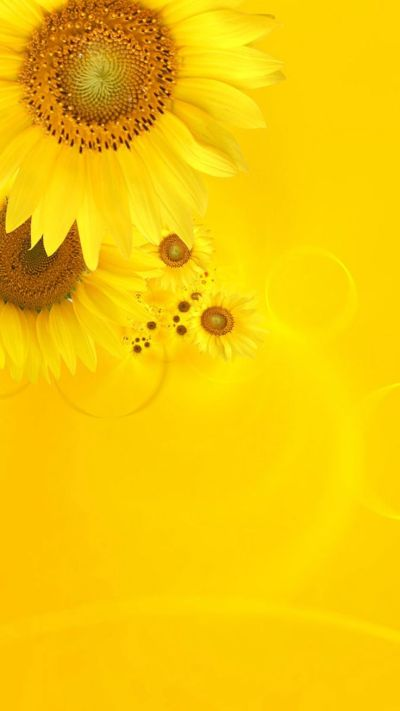 1000+ ideas about Iphone Wallpaper Yellow on Pinterest   Screensaver, Phone wallpapers and Phone ...