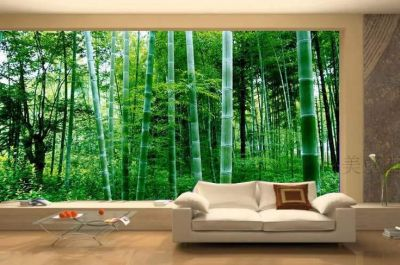Alfa img - Showing > Modern Wallpaper Forest | House Stickers | Pinterest | Living rooms ...