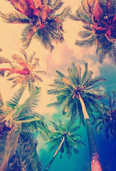25+ best ideas about Cool backgrounds on Pinterest | Lock screen wallpaper, Screensaver and Cool ...
