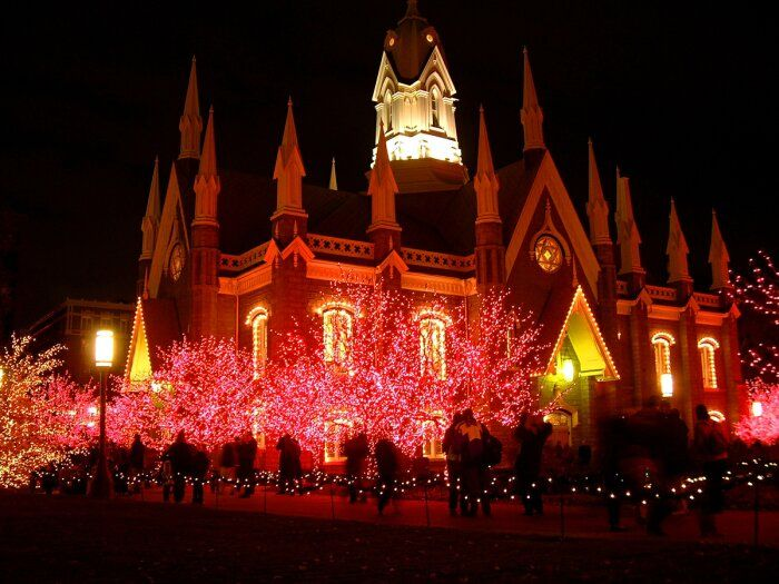 exterior perfect christmas light displays design ideas with full colour lighting at trees picture e