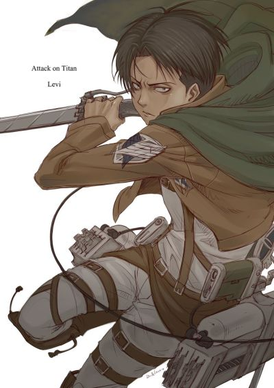 25 best images about Attack on Titan obsession: Captain Levi on Pinterest | Chibi, Shingeki no ...