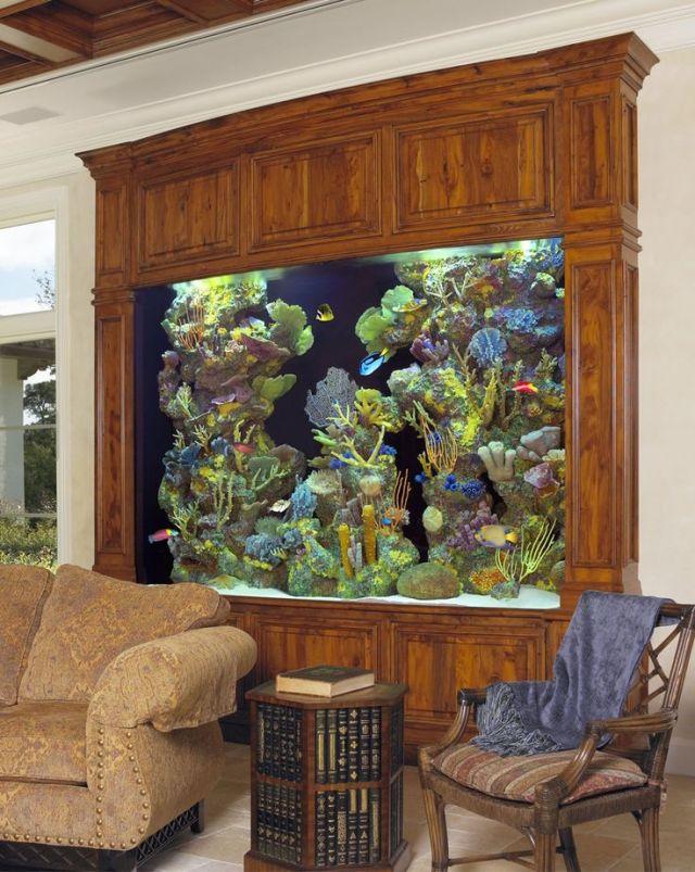 Unique Aquarium Interior Design Ideas   Fish Tank Decoration Ideas