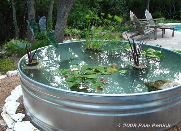 Stock tank water garden: Turtle home id put this in my house | Tank