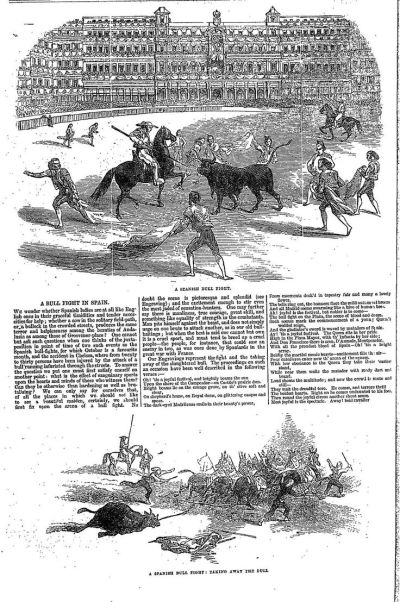 17 Best images about Year 1861 on Pinterest | Plymouth, Cattle and The black