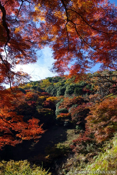 Arashiyama in Kyoto: On the way to the monkey park (November 2012). | Japan Travel | Pinterest ...