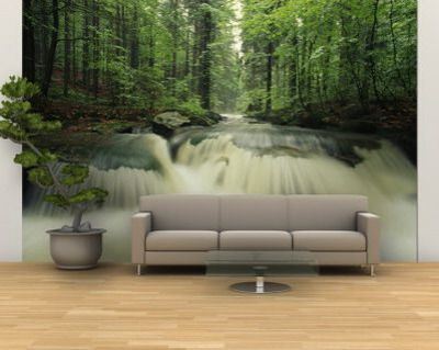 Having a full wall outdoor scene photo also makes a small room feel bigger, if there are no ...