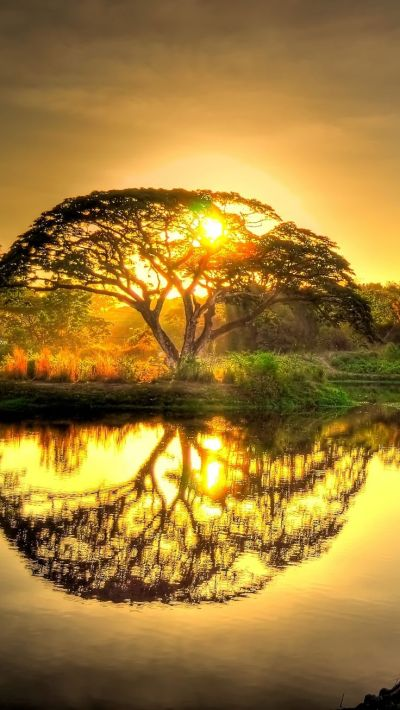 Best 20+ Sunsets ideas on Pinterest   Sunset photography, Beach sunset photography and Pretty ...