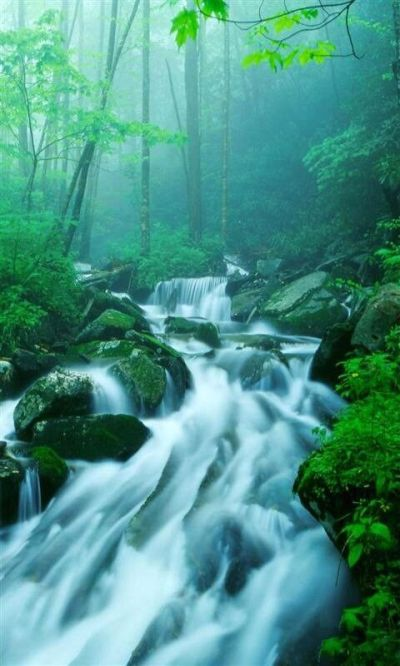 waterfalls pictures for screensavers | -live-waterfall-screensaver-mobile-live-waterfall-hd ...