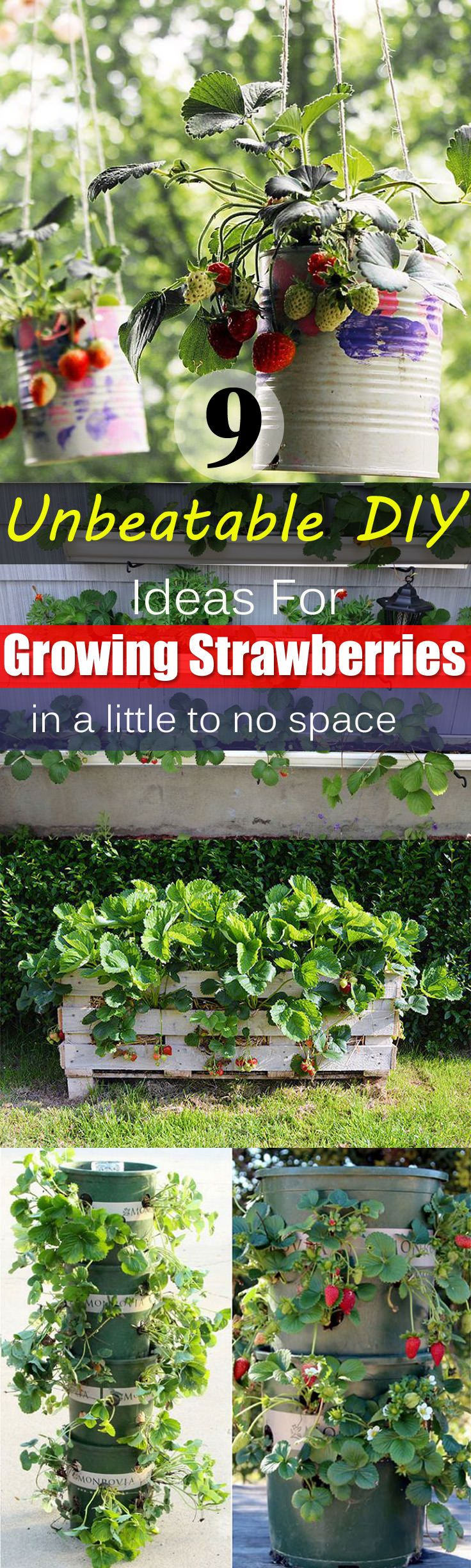 Genial Growing A Little To No Space Withvegetable Garden Container Ideas Vegetable Garden Container Container Gardening Free Unbeatable Diy Ideas garden Diy Gardening Containers