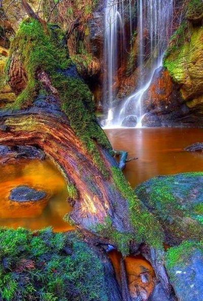 Roughting Linn Waterfall, Northumberland, England | Beautiful, Amazing, World | Pinterest ...