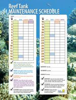 Use our printable reef tank maintenance schedule to stay on top of all