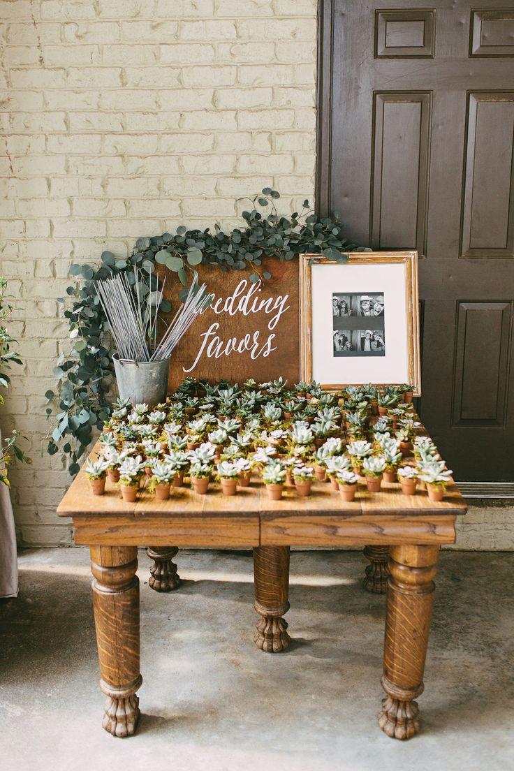 succulent wedding favors succulent wedding favors Kelly Ginn Photography