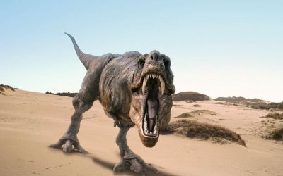 t rex wallpaper | 3D T Rex Wallpaper - WallpaperTube | Dinosaurs | Pinterest | Wallpapers and 3d