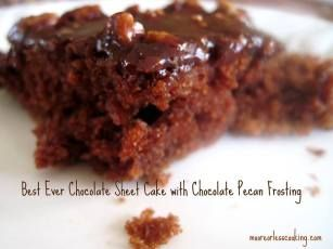 Best Chocolate Sheet Cake: