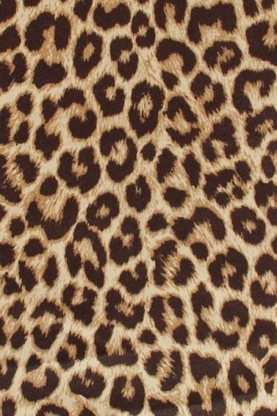 17+ best ideas about Leopard Print Background on Pinterest | Leopard print wallpaper, Leopard ...