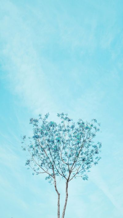 25+ best ideas about Blue wallpaper iphone on Pinterest | Phone backgrounds, iPhone wallpapers ...