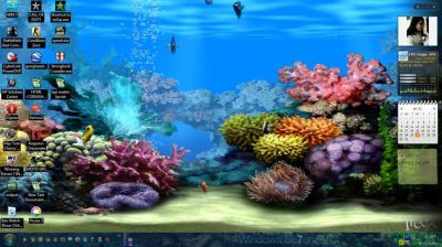 free 3d sound desktop moving background living dolphins animated installation. | WALLPAPER 3D ...