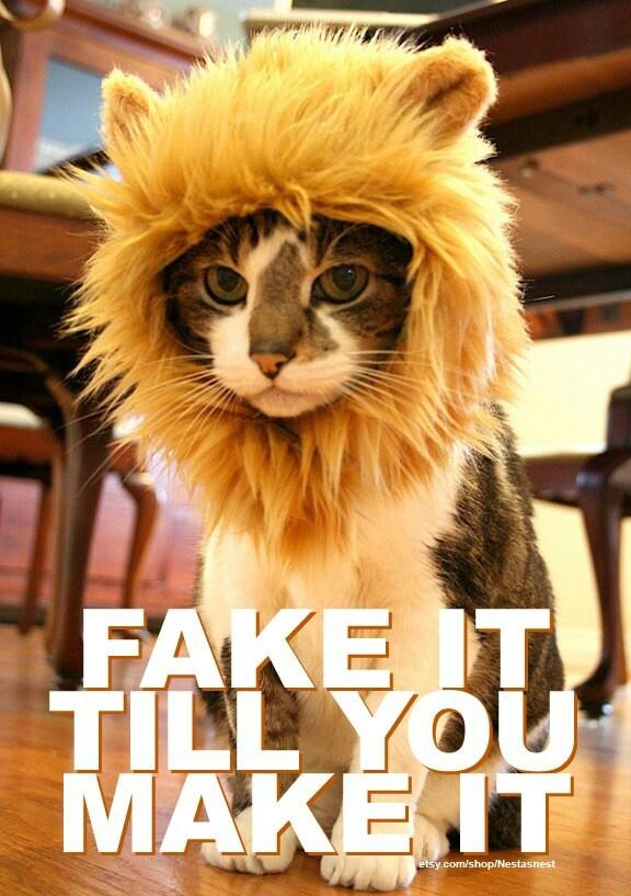 Fake It...