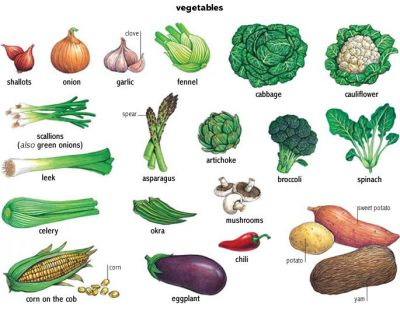 43 best VEGETABLES AND FRUIT LIST NAMES images on Pinterest