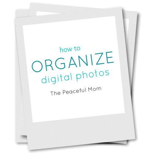 Medium Crop Of How To Organize Digital Photos