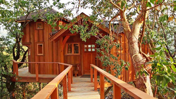 modren treehouse masters treehouses your childhood dream home the inside decor