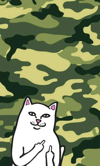 Ripndip iphone wallpaper #ripndip #middle #finger #cat #wallpaper #iphone #green #camouflage ...