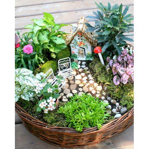 Medium Crop Of Fairy Gnome Garden
