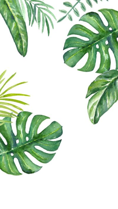 Plants watercolour iPhone wallpaper | Iphone wallpapers | Pinterest | Watercolor, Wallpaper and ...
