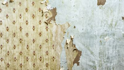 Stuck with Old Wallpaper? Paint Over It - Miller Hobbs Group | clybourne park | Pinterest ...
